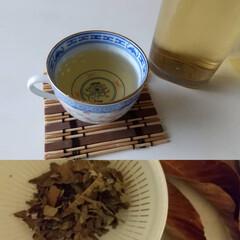 赤梅干し/梅仕事/枇杷茶/暮らし 枇杷茶作りました😃 梅雨の湿気で葉っぱが…
