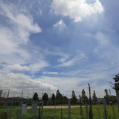 「今日、お昼前の福山の空です❗  電線の少…」(2枚目)