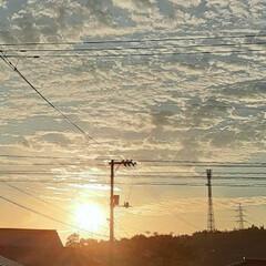「今朝の福山は快晴、17℃!  日中は27…」(1枚目)