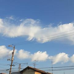 「今朝の福山は快晴、17℃!  日中は27…」(2枚目)