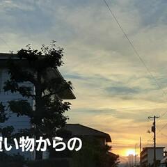 「ささやかですが  今日の夕焼けです❗(*…」(1枚目)