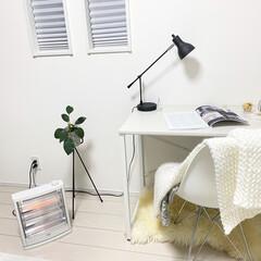 イームズチェア/マイルーム/観葉植物のある暮らし/観葉植物/IKEA/ACTUS/... マイルーム🛋 少し肌寒い夜は電気ストーブ…
