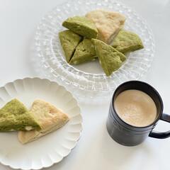 ナハトマン ダンシング・スターボサノバ プレート ペア(皿)を使ったクチコミ「抹茶とプレーンのホワイトチョコ入りスコー…」