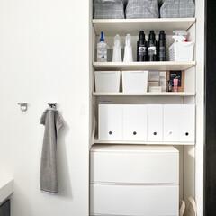 パストリーゼ77 500ml <スプレーヘッド付き> | パストリーゼ77(部屋用)を使ったクチコミ「我が家の脱衣所収納 可動棚が凄く使いやす…」(1枚目)
