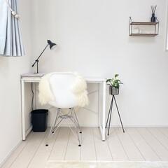 暮らしを整える/整理収納/整理収納アドバイザー/インテリア/観葉植物/すっきり暮らす/... マイルームpic📷 空き部屋状態の客室に…