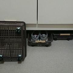 キャスター/靴の収納/100均 我が家の下駄箱の下はスペースがあるので、…