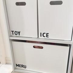 カラボ/おもちゃ収納/カラーボックス/ぬいぐるみ/ぬいぐるみ収納/収納/... おもちゃ収納  メルちゃんのお医者さんセ…