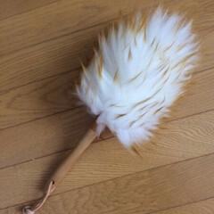 #掃除グッズ/掃除グッズ ついつい、見た目だけで買ってしまった掃除…(1枚目)