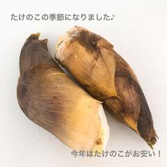レシピ/うちごはん/タケノコのアク抜き/たけのこごはん/limiaキッチン同好会 たけのこの季節になりました。 今年はたけ…