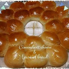 パン/手作りパン/パン作り/コストコ/カマンベール ❇カマンベールのちぎりパン  チーズまわ…