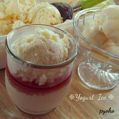 ヨーグルトアイス/ヨーグルト/プリン 蒸し器でプリン作り💖 生クリームとヨーグ…