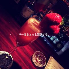 お酒/フルーツカクテル/フルーツ/バー ここのバーはフルーツのお酒がおいしい。数…