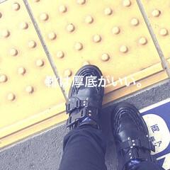 厚底/ファッション/スニーカー/靴/フォロー大歓迎 靴は厚底に限る。