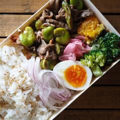 お昼ごはん/料理/つくりおき/作り置き/中華/空豆/... 空豆の中華炒め! 豆の色も炒めることによ…