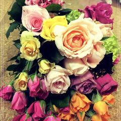 花のある生活/癒し/stay home/残農薬0/天使のバラ/コロナ支援/... コロナ支援のサイトより頂いた薔薇達✨ 待…