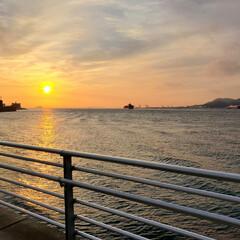 「先日、久しぶりに菊川に行きまして、色々写…」(3枚目)