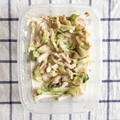 料理/作り置き/作り置きおかず/作り置きレシピ/おうちごはん/お弁当おかず/... 冷蔵作り置きおかず🍳  〜キャベツと大根…