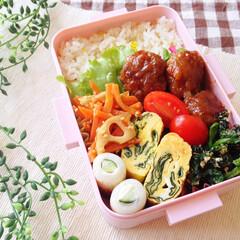 ごはん/料理/おべんとう/お弁当/暮らし/節約 🍴おべんとう🍴  ◯ 発芽玄米ご飯 ◯ …