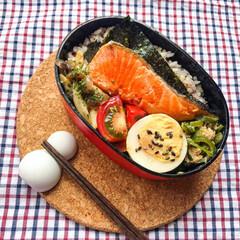 鮭/旦那弁当/お弁当作り/おべんとう/お弁当/ランチ 本日のお弁当🍽  ◯焼き鮭 ◯しめじの…