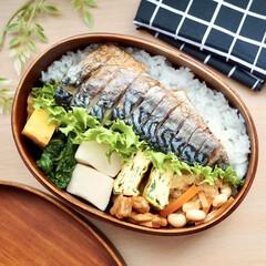 おうちごはん/ランチ/簡単/おしゃれ/暮らし/節約/... 塩サバ弁当✻今日は和食弁当に仕上げました…