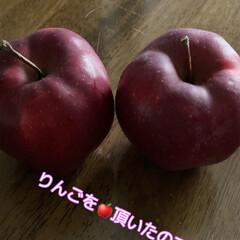 「昨日お友達からリンゴを頂きました😊 果物…」(1枚目)