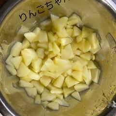 「昨日お友達からリンゴを頂きました😊 果物…」(2枚目)