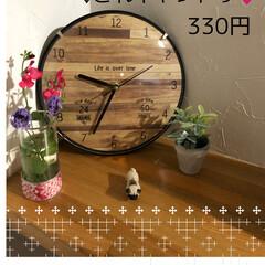 お菓子/お花/時計/キャンドゥ キャンドゥで可愛い時計を見つけました🕰カ…