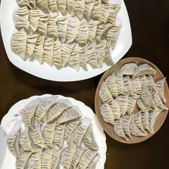 夕飯/お家時間 我が家の餃子は作るの私 焼き餃子、水餃子…