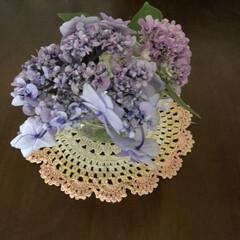 お家/癒し/紫陽花 紫陽花をもらったので飾りました❣️ お部…