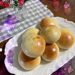 ワンコのいる生活/手作りパン/お家時間 今日はやっとパンを焼いたよ❣️   まろ…