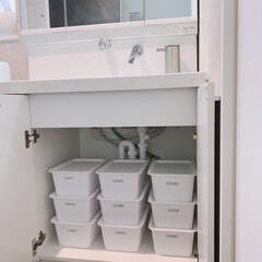 シンプルヒューマン simplehuman 充電式センサーポンプ ST1044 266ml つやあり   ディスペンサー ハンドソープ 自動 充電式 おしゃれ(ディスペンサー、スプレーボトル)を使ったクチコミ「うちの洗面台下収納☝︎ みんな知ってる定…」(1枚目)