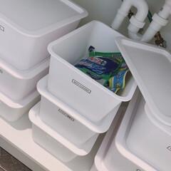 ライオン 業務用 トイレルック 450ml 本体 ( 尿石も落ちるトイレ用洗浄剤 )   ライオン(トイレ洗剤)を使ったクチコミ「☑︎toilet cleanser ☑︎…」(2枚目)