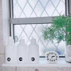 詰め替えボトル/mon・o・tone 楽天市場店/洗剤収納/洗剤ボトル/シンプル/すっきり暮らす/... 愛用中の詰め替えボトルは、 mon・o・…(1枚目)