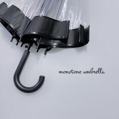 シンプルライフ/モノトーン雑貨/傘/スリーコインズ購入品/スリコ/モノトーン好き/... ☔︎ ☔︎ umbrella ☔︎ ☔︎…