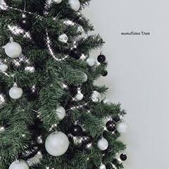 YDM 55MMシルバーアソートボール12P COA-820 クリスマス飾り ボールオーナメント(製菓用デコレーション)を使ったクチコミ「🎄merry Xmas🎄  我が家も出し…」(2枚目)