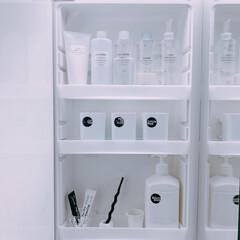 歯ブラシ ゼブラシ 2本入 ×5個 ハブラシ 歯科専売品(歯ブラシ)を使ったクチコミ「我が家の洗面台 真ん中の鏡の奥の収納☝︎…」(1枚目)