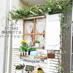 玄関アプローチdiy/玄関/DIY/100均/パーテーション/パーテーションdiy/... 私の住む神奈川も少しだけ雪が降りました~…
