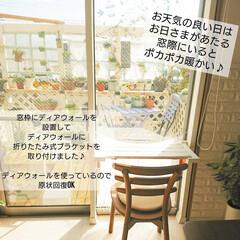 ディアウォール DWS90 | 若井産業(突っ張りラック)を使ったクチコミ「こんばんは~🤗✨  先日窓際に折りたたみ…」(2枚目)