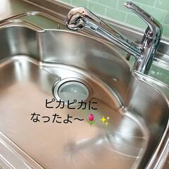 100均/セリア/掃除/多目的クレンザー/水垢 セリアの多目的クレンザー使ってみました♪…(2枚目)