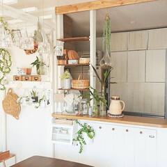 インテリア/DIY/ディアウォール/雑貨/キッチン/収納/... キッチンカウンターに作ったディアウォール…
