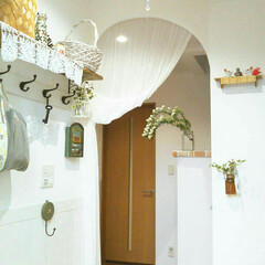玄関インテリア/グリーンのある暮らし/グリーンインテリア/コデマリ/漆喰DIY/漆喰壁/... 玄関にアーチと漆喰の壁にDIY してから…