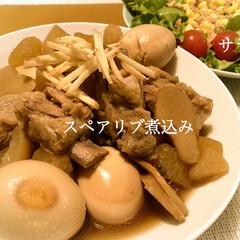 煮物/スペアリブ/献立/晩ご飯 昨日の晩ご飯  *スペアリブ煮込み…