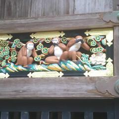 日光東照宮/日光/おでかけ/暮らし こちらが有名な3猿ですね。 建物に描かれ…