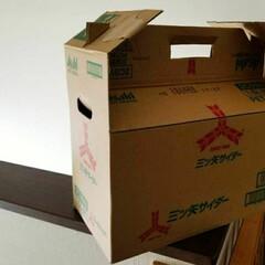 リサイクル/段ボール/DIY/収納/雑貨/暮らし 段ボールを おしゃれにバックにして 野菜…(2枚目)