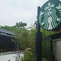 スターバックス/京都府/おでかけ/暮らし 京都の 平等院鳳凰堂前にある スターバッ…