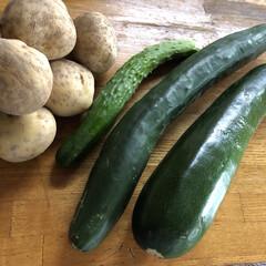 特大級/ズッキーニ/じゃがいも/きゅうり/頂き物/野菜 田舎あるある‼︎ この時期は、野菜と果物…