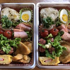 2人分/ピクニック弁当/おでかけ ピクニック弁当🍱