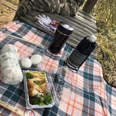 山の中 だぁれもいない山の中、夫婦2人でお弁当🍙…