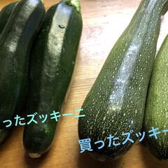 野菜/同じものが舞い込む現象/ズッキーニ 最近多いこの現象❗️ 買ったら、同じもの…