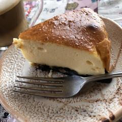 バリスタ/チーズケーキ チーズケーキ、焼きあがりました🤗 今日食…